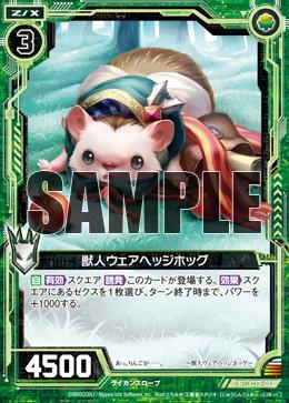 C17-013 Sample