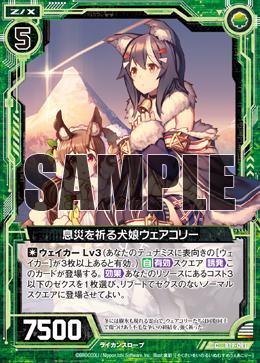 B19-091 Sample