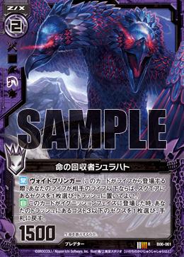 B06-061 Sample