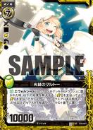 C10-011 Sample