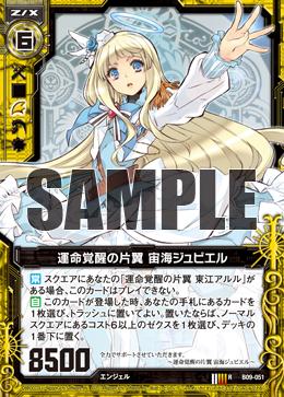 B09-051 Sample