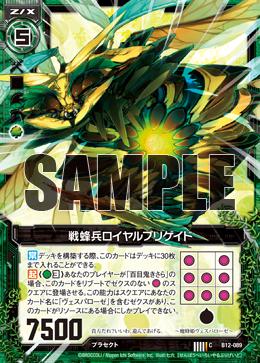 B12-089 Sample