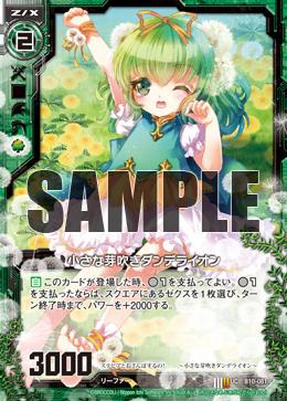 B10-081 Sample