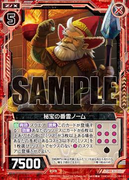 B19-011 Sample