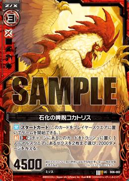 B06-002 Sample