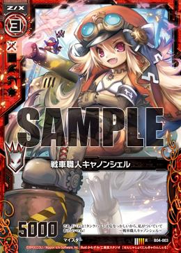 B04-003 Sample