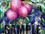 Bluish Poison Spider, Allium Gooty