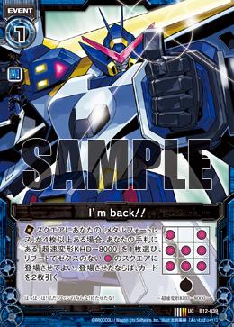 B12-039 Sample