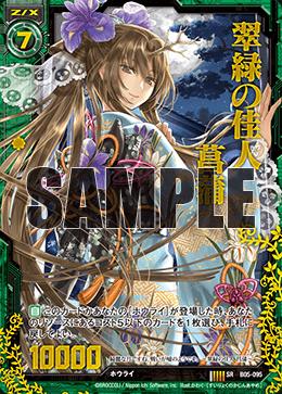 B05-095 HSR Sample