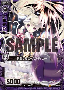 B11-063 Sample