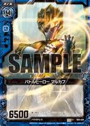 B04-028 Sample