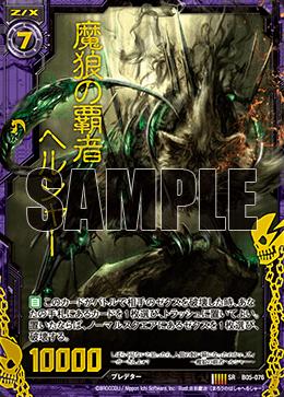 B05-076 HSR Sample