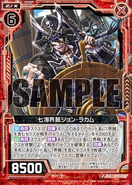 B19-015 Sample