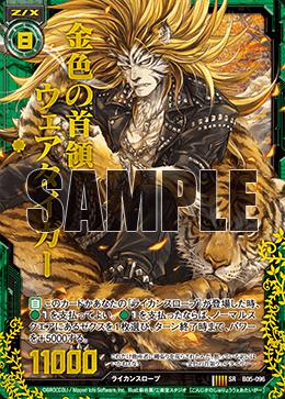 B05-096 HSR Sample