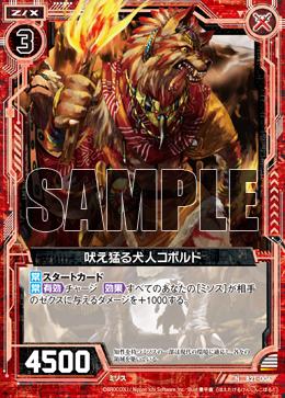 B21-006 Sample