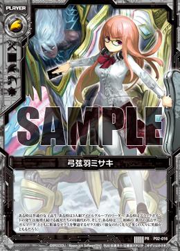 P02-016 Sample
