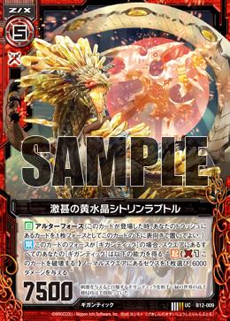 B12-009 Sample