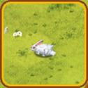 Rabid Hare